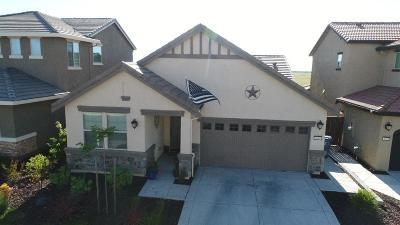 Rancho Cordova Single Family Home For Sale: 3694 Rockdale Drive