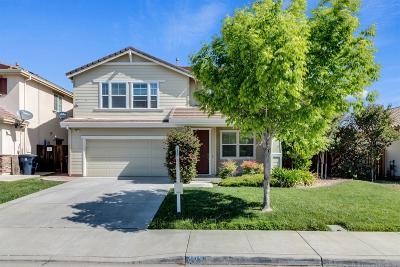 Tracy Single Family Home For Sale: 423 Lasata Drive