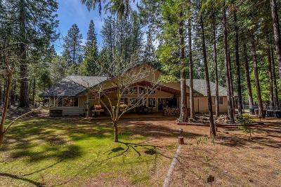 Volcano Single Family Home For Sale: 19840 Ponderosa Drive