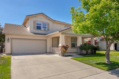 Modesto Single Family Home For Sale: 3921 Dragoo Park Drive