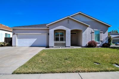Stockton Single Family Home For Sale: 1023 Cypress Run Dr