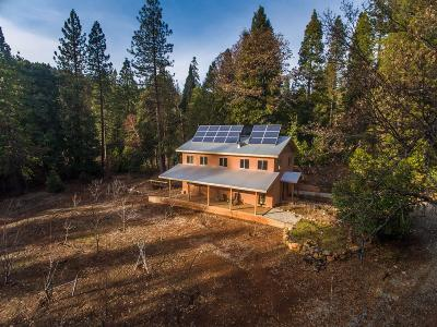 Nevada City Single Family Home For Sale: 12309 Casci Road