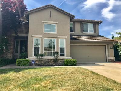 Elk Grove Single Family Home For Sale: 9584 Annika Court