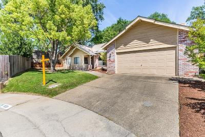 Orangevale Single Family Home For Sale: 9231 Hilari Way