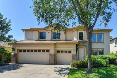 El Dorado Hills Single Family Home For Sale: 1606 Daunting Drive