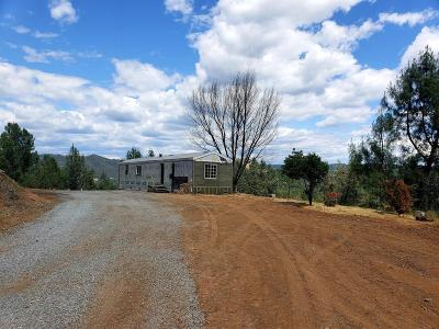 Placerville Single Family Home For Sale: 4790 Samson Ranch