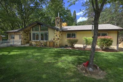 Placerville Single Family Home For Sale: 1843 Pleasant Valley Road