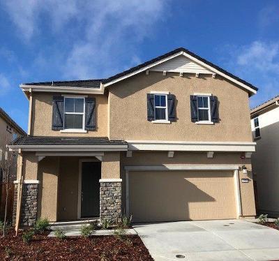 Rocklin Single Family Home For Sale: 6120 Mehrten Circle