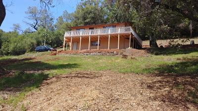 Jackson Single Family Home For Sale: 19891 Meadowood Drive