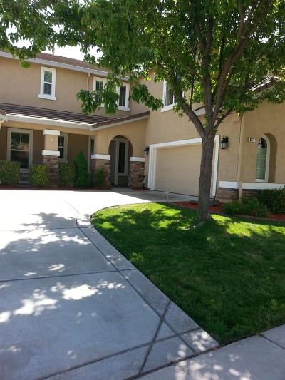 Elk Grove Single Family Home For Sale: 9977 Pinot Gold Place