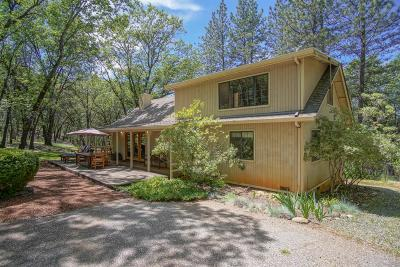 Grass Valley Single Family Home For Sale: 11403 Woodacre