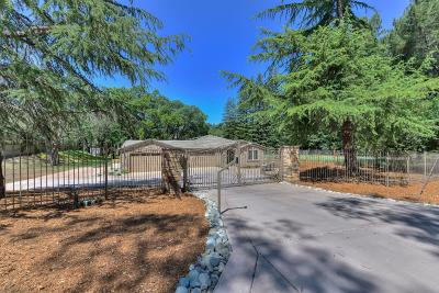 El Dorado Hills Single Family Home For Sale: 2216 Allegheny