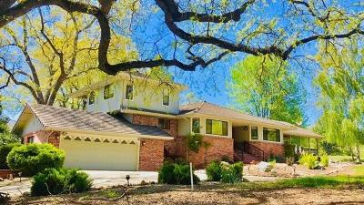 Groveland Single Family Home For Sale: 19260 Pleasant View Drive