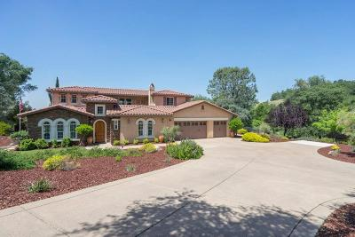 Shingle Springs Single Family Home For Sale: 7006 Steeple Chase Court