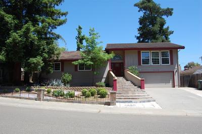 Fair Oaks Single Family Home For Sale: 5136 Romero Way