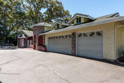 Shingle Springs Single Family Home For Sale: 3180 Lariat Road