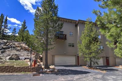 El Dorado County Condo For Sale: 3025 Christmas Valley Rd.