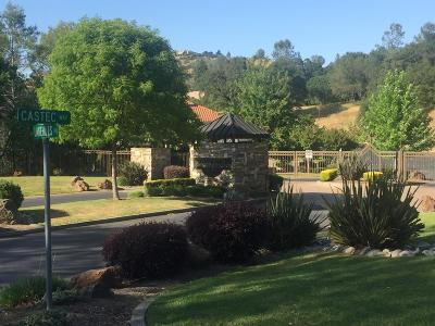 El Dorado Hills Residential Lots & Land For Sale: 825 Castec Way