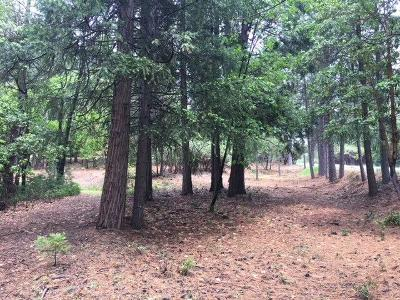 Placerville Residential Lots & Land For Sale: 3729 Stope Drive