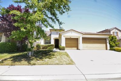 Elk Grove Single Family Home For Sale: 6209 Gus Way
