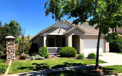 West Sacramento Single Family Home For Sale: 3548 Squaw Road