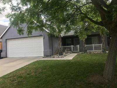 Modesto Single Family Home For Sale: 1528 Citrus Drive