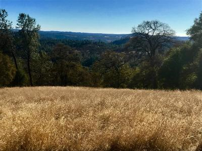 Garden Valley CA Residential Lots & Land For Sale: $125,000