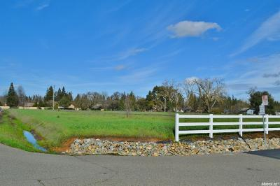 Sacramento Residential Lots & Land For Sale: Willow Hollow Road