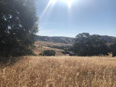 Patterson Residential Lots & Land For Sale: 20331 Perrett Court
