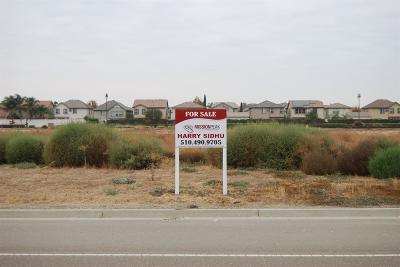 Lathrop Commercial Lots & Land For Sale: 17401 South Manthey Road