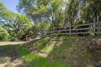 Placerville Residential Lots & Land For Sale: Baldwin Drive