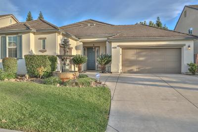 Elk Grove Single Family Home For Sale: 9492 Hollow Springs Way