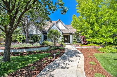 El Dorado Hills Single Family Home For Sale: 4156 Greenview Drive