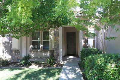 Elk Grove Single Family Home For Sale: 9745 Summer Glen Way