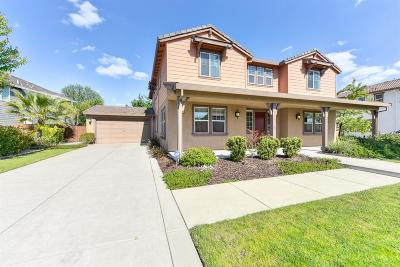 Roseville Single Family Home For Sale: 9595 Canopy Tree Street