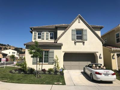 El Dorado Hills Single Family Home For Sale: 4007 Bari Drive