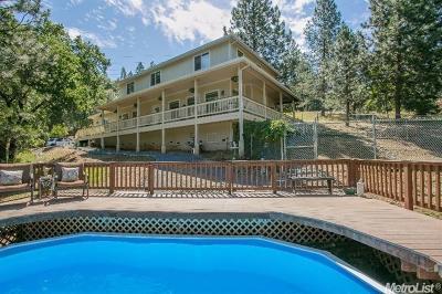El Dorado County Single Family Home For Sale: 1420 Wildlife Way