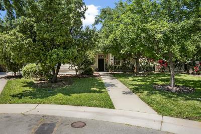 Orangevale Single Family Home For Sale: 9176 Shawmutt Court