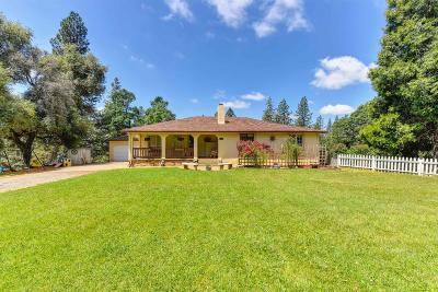 Placerville Single Family Home For Sale: 8641 State Highway 193