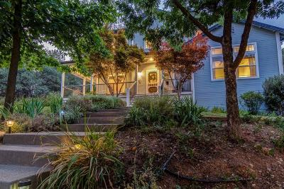 Single Family Home For Sale: 919 Crawford Drift Court
