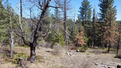 Somerset Residential Lots & Land For Sale: Grizzly Flats