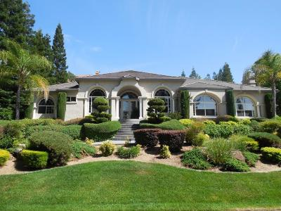 Granite Bay Single Family Home For Sale: 9685 Wexford Circle