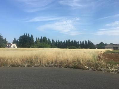 Elk Grove Residential Lots & Land For Sale: 10441 Halfway Court
