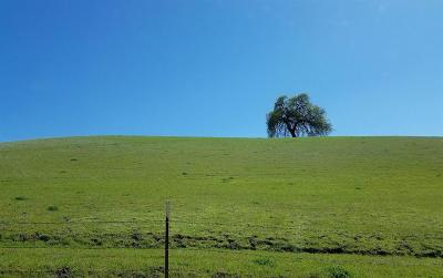 Capay CA Commercial Lots & Land For Sale: $16,000,000