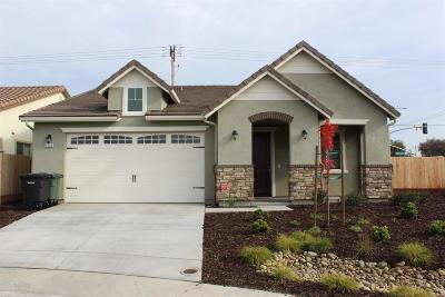 Modesto Single Family Home For Sale: 3916 Lookout Drive