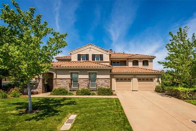 El Dorado Hills Single Family Home For Sale: 5003 Tesoro Way