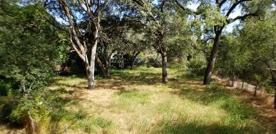 Auburn Residential Lots & Land For Sale: Chamberlain
