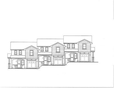 Auburn Single Family Home For Sale: 151 Electric Street