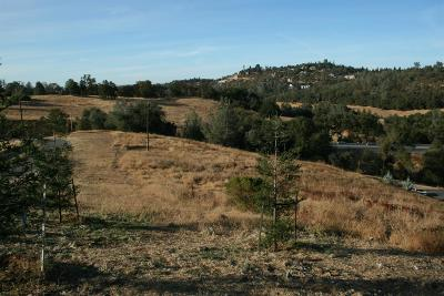 El Dorado Hills Residential Lots & Land For Sale: 2363 Hill View Dr
