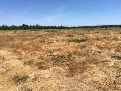 Yolo County Commercial Lots & Land For Sale: County Road 4